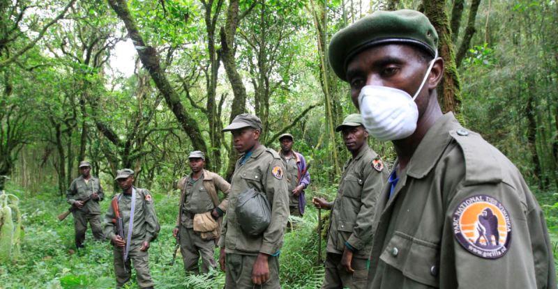 Ecogardes de l'ICCN