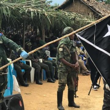 Milice NDC rénové