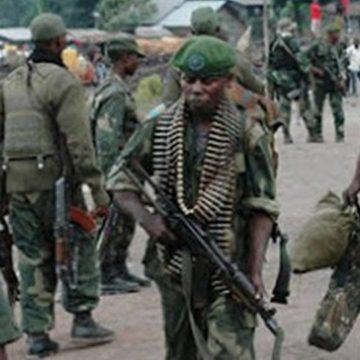 Beni: Un présumé rebelle Adf  remis aux Fardc par les Mai-mai