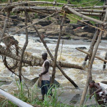 Province de la Tshopo, enfant pauvre de la République