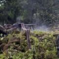Affrontements entre FARDC et milice CODECO près de Bunia