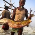 Forum sur la pêche, l'élevage et l'aquaculture, du 11 au 14 décembre