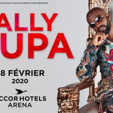 Concert de Fally Ipupa à Paris, Un coup de fil de Tshisekedi à Macron