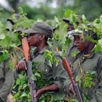 Un mort et deux blessés graves par les FDLR à Kinyandonyi (Nord-Kivu)