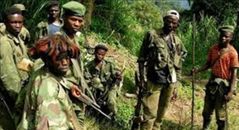 Beni: Des miliciens Mai-mai signalés au sommet du mont Maghukungu