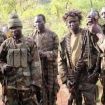 Beni : tous les ADF neutralisés autrefois à Halungupa sont des étrangers (FARDC)