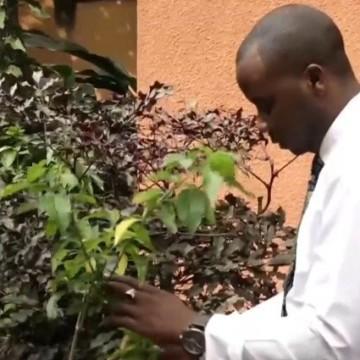 Covid-19 : Confusion autour de la validation du produit du Dr Munyangi