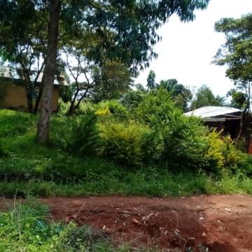 Beni: 5 morts dans une attaque ADF à Kinyambaore