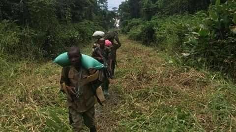 Nord-Kivu : accalmie à Pinga après affrontements entre deux ailes de la milice NDC-Rénové