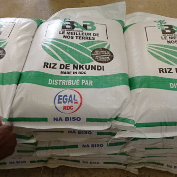 « A Muanda, la société EGAL ne veut pas payer la douane » (chef de bureau DGDA)