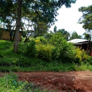 Ruwenzori : 7 morts et plusieurs disparus dans une nouvelle incursion ADF à Bulongo