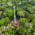 La forêt de Yangambi désormais dotée d'une tour à flux de carbone