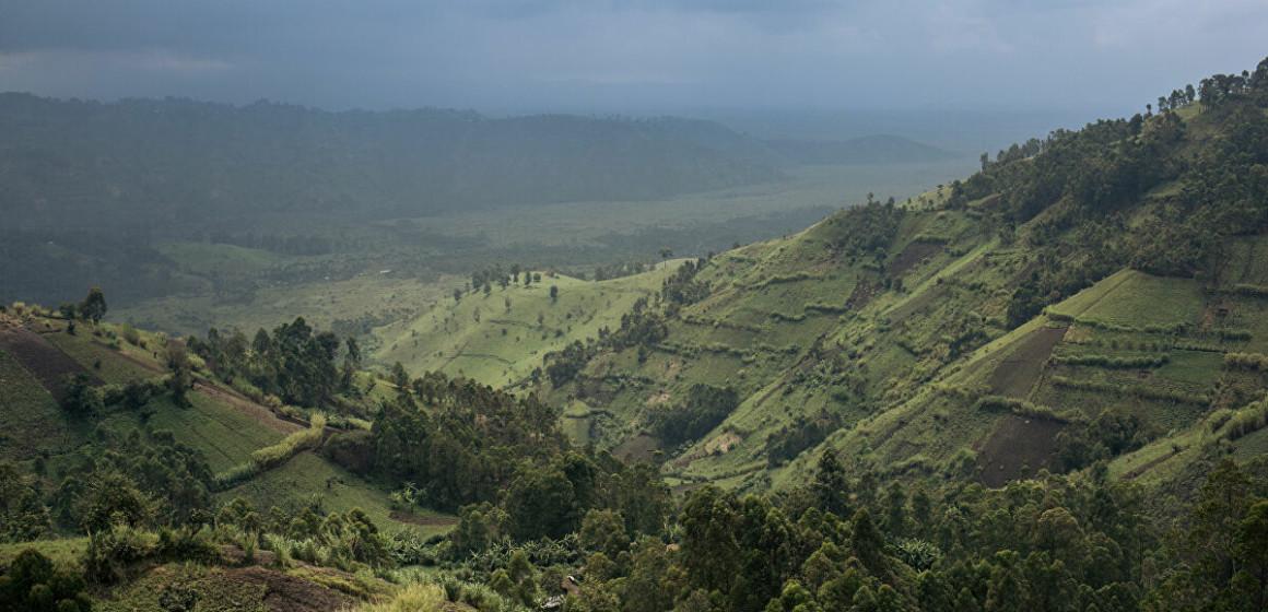 Beni : L'armée découvre un camp d'entraînement des ADF dans le parc des Virunga