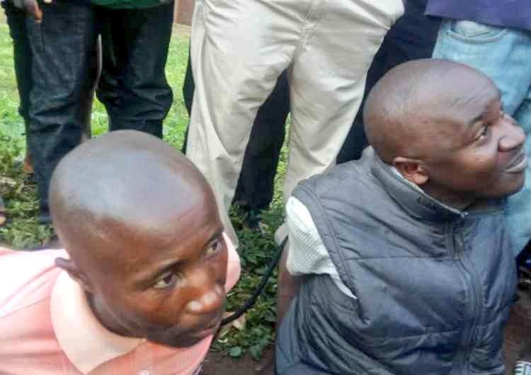 Beni : Deux rebelles ADF arrêtés par l'armée à Kainama