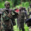 Nord-Kivu : Un mort et un blessé après l'attaque d'une position FARDC par les FDLR
